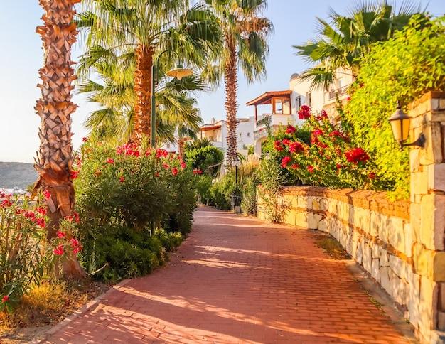 地中海沿岸に熱帯植物が生い茂る小さな町の美しい通り