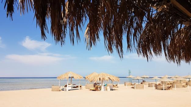 Красивый тропический пляж с соломенными зонтиками на берегу красного моря в шарм-эль-шейхе. летний пейзаж красивый солнечный пляж в египте. концепция отпуска, путешествий, отпуска.