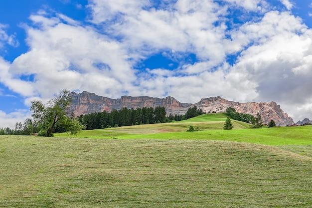 切りたての高山草原の美しい景色。