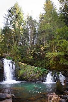 岩だらけの峡谷にある美しい滝は、緑の秋の森に囲まれています。ウクライナ、ザカルパッチャ