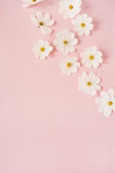 美しい白いカモミール、淡いピンクのデイジーの花。休日、結婚式、誕生日、記念日のコンセプト
