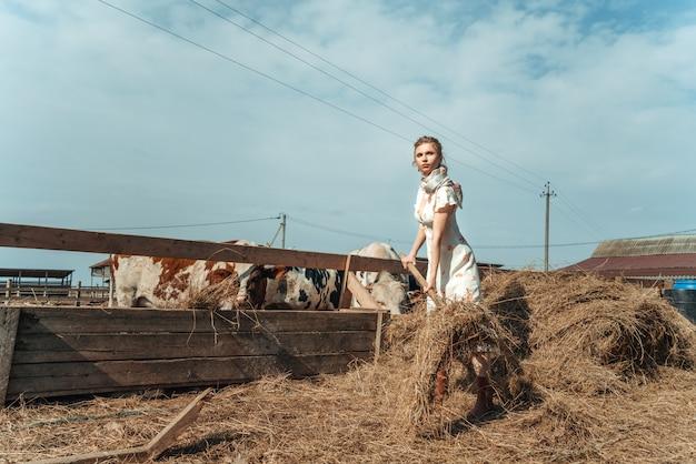 Красивая женщина на ферме кормит скот сено