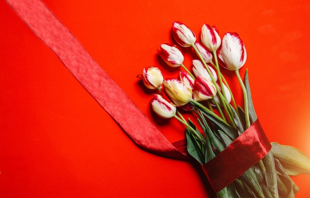 赤い背景の上の赤いチューリップの美しい花束