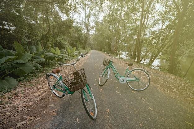 Велосипед на дороге с солнечным светом и зеленым деревом в открытом парке.