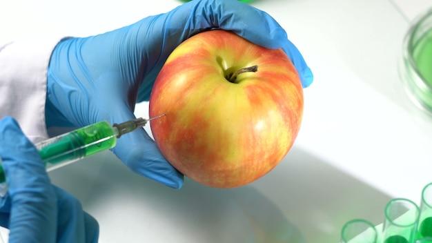 生物学者は注射器でリンゴを注射します。遺伝子組み換え生物。科学実験。クローズアップ、4kuhd。