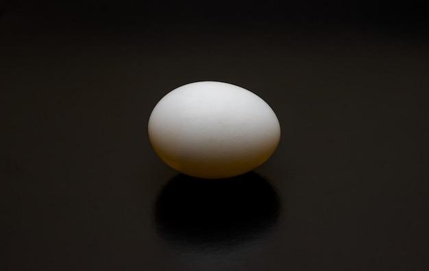 Птичье яйцо крупным планом, вид сверху на темном фоне с длинной тенью