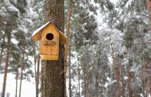 冬の森の木の幹に巣箱がぶら下がっている