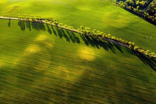 Вид с высоты птичьего полета на зеленое поле и дорогу в европе. природа беларуси. собственное зеленое поле на закате и дороге