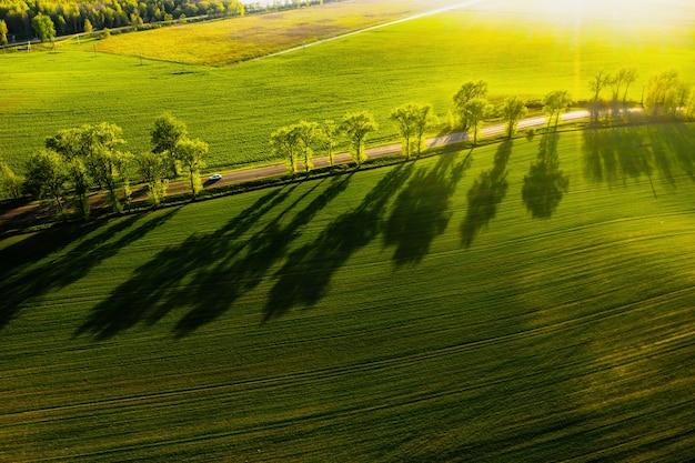 ヨーロッパの緑の野原と道路の鳥瞰図。ベラルーシの自然。日没と道路の独自の緑の野原。