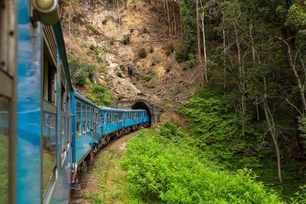 Синий пассажирский поезд движется по джунглям шри-ланки.