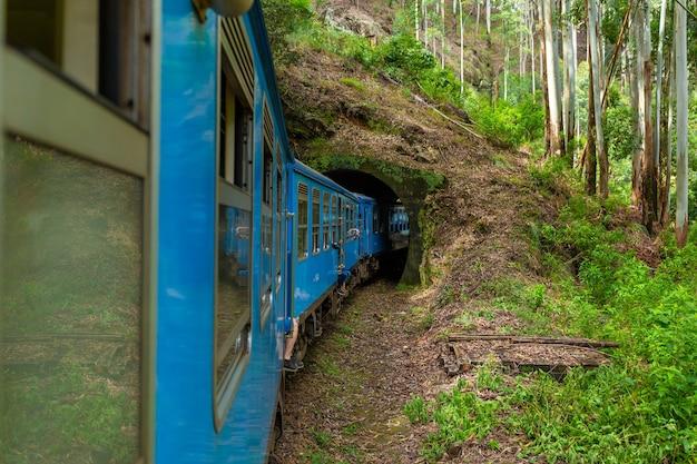 Синий пассажирский поезд движется по джунглям шри-ланки