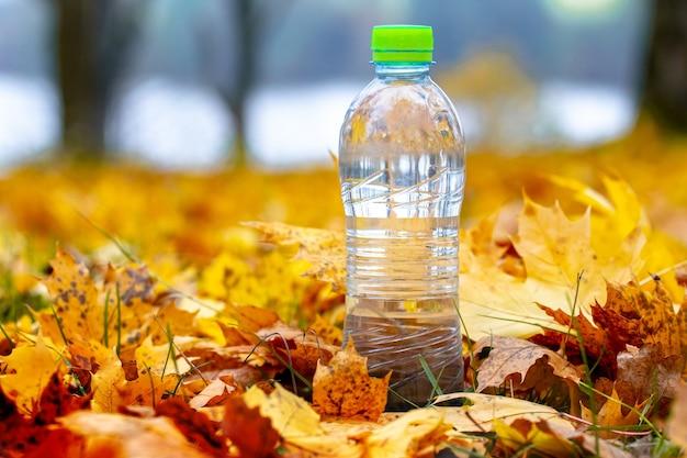 黄色い落ちたカエデの葉の間の森の中のきれいな水のボトル