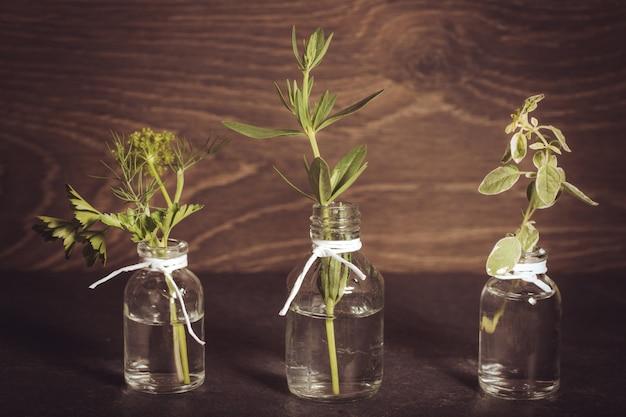 허브, 파슬리, 백리향, 딜, 히솝이 든 에센셜 오일 한 병은 오래된 나무 배경에 있습니다. 요리, 대체 의학, 마사지, 아로마테라피 개념.