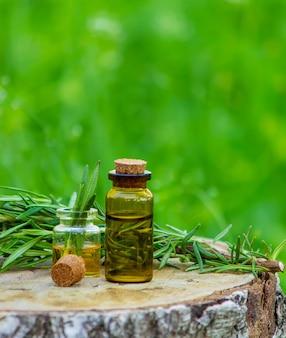 나무 밑둥에 로즈마리 오일 한 병. 에센셜 오일, 천연 요법. 자연. 선택적 초점
