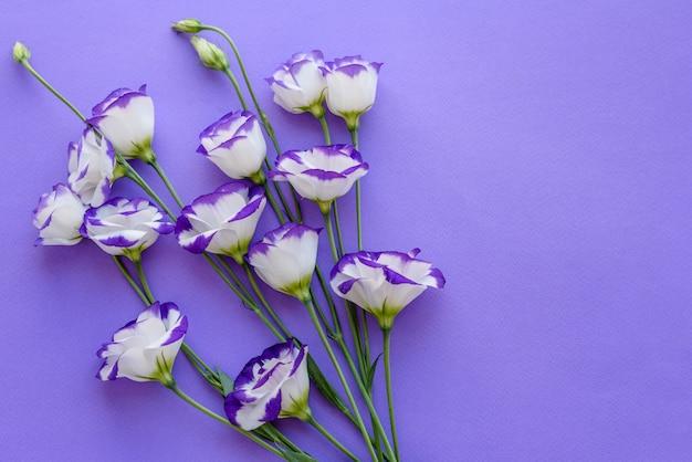 1トンの背景に美しい切りたての紫トルコギキョウの花束