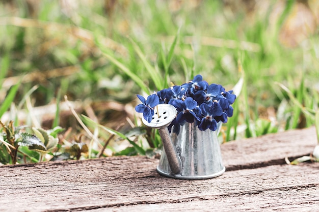 Букет синих лесных цветов в жестяной лейке на деревянной доске ретро на цветочном лугу крупным планом