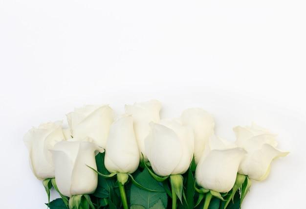 Букет из нежных белых роз на белом фоне.
