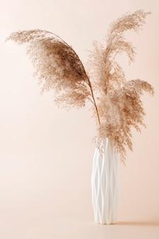 Букет из пампасных трав в белой вазе на светлом фоне. стиль бохо.