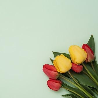 발렌타인 데이 또는 어머니의 날에 사랑하는 사람들을 축하하기 위해 녹색 배경에 잎이 달린 빨간색과 노란색 튤립 꽃다발. 봄과 중요한 축제 행사에 대한 최소한의 개념.