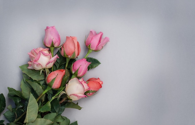 Букет роз на сером фоне. три вида роз в одном букете. розовые розы на серой поверхности.