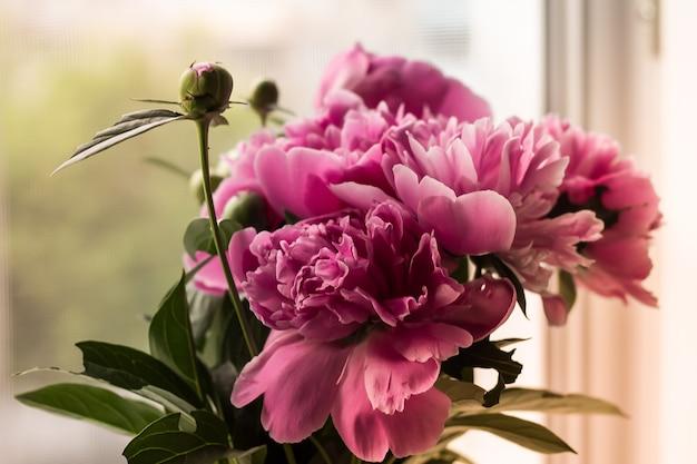 明るいぼやけた背景に柔らかいピンクの牡丹の花束