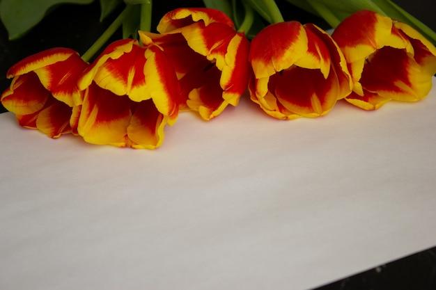チューリップの花束は、碑文の白いシートの近くの背景にあります