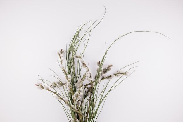 小枝とアザラシの春の背景の花束