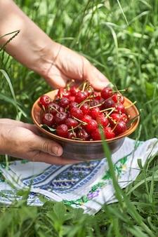 Чаша, полная сладких спелых красных вишен, стоящих на зеленой траве. женщина кладет на траву миску с вишней