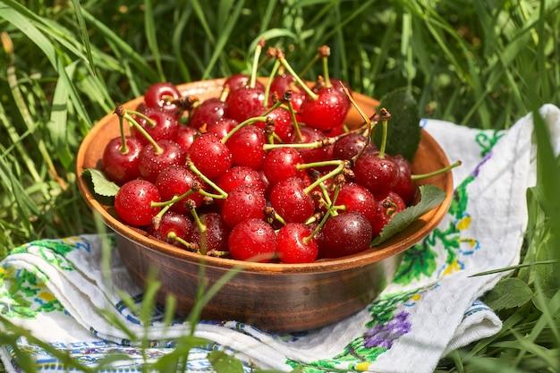 녹색 잔디에 서있는 달콤한 익은 빨간 체리의 전체 그릇.