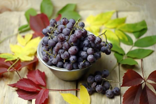 紅葉の青ブドウのボウル。