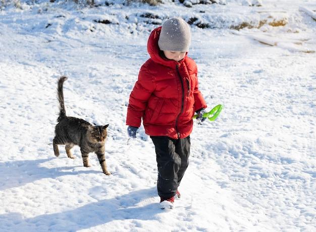 少年と猫が雪の中を歩きます。赤い上着を着た少年と灰色の猫が雪に覆われた公園を歩く