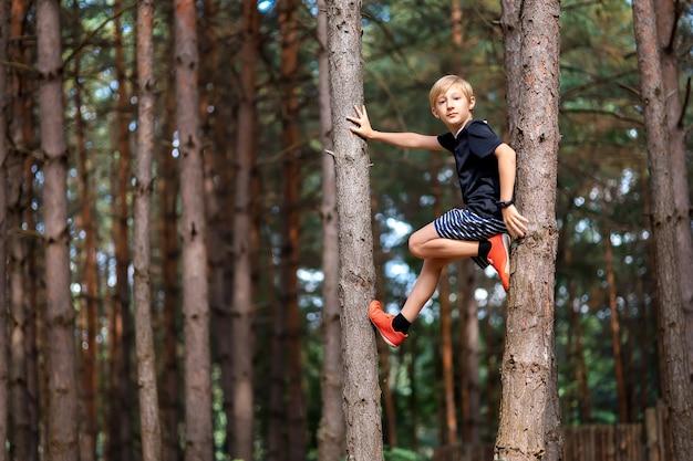 소나무 숲에서 한 소년이 나무에 올라 카메라를 바라보고 있다