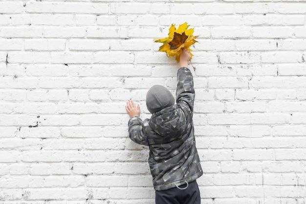 소년은 벽돌 벽에 서서 그의 손에 나뭇잎을 들고