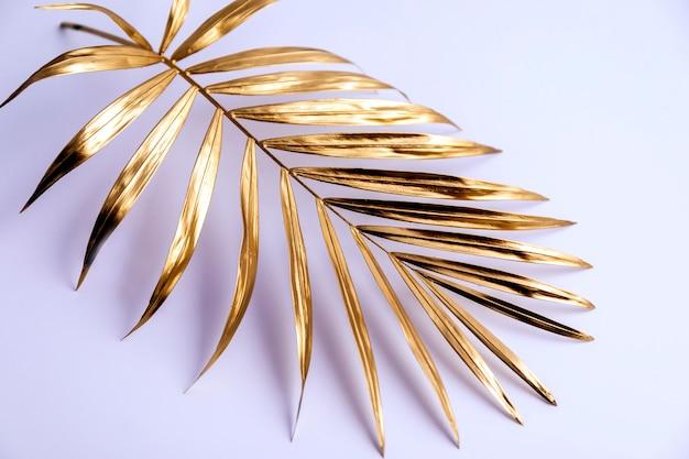 白い背景の上の黄金のヤシの木の枝。