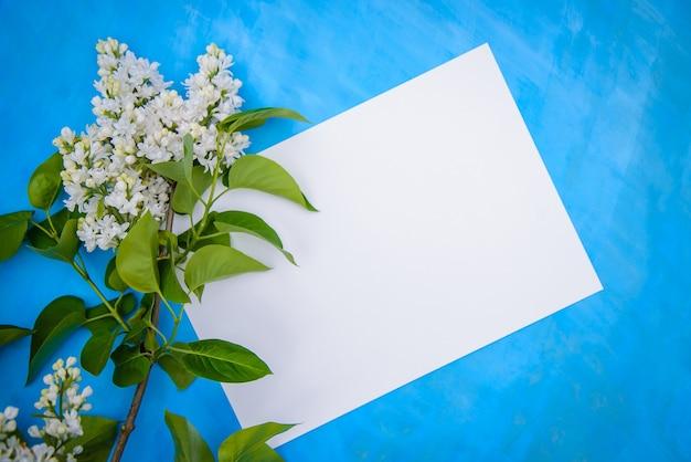 Ветка красивой персидской махровой белой сирени и лист бумаги на синем фоне, копией пространства