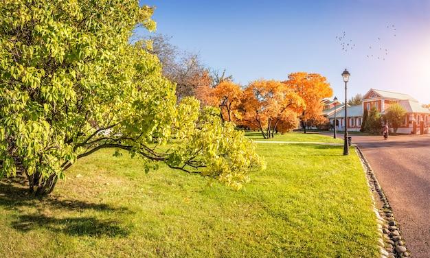 가을 공원의 라일락 가지와 모스크바의 tsaritsyno의 하늘에 있는 새들