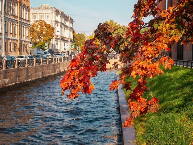 Ветвь красного осеннего клена над голубой водой. район новой голландии в санкт-петербурге, россия.