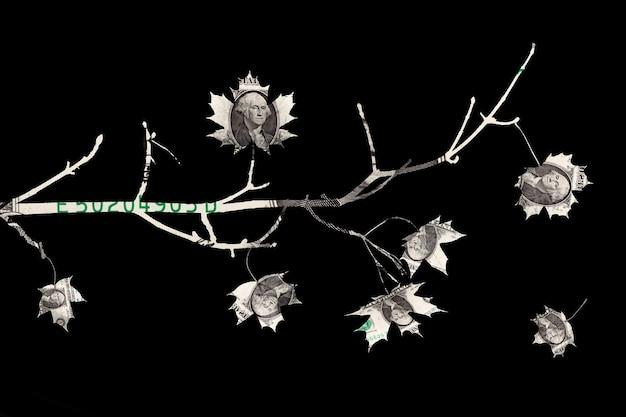 미국 달러로 만든 나무 가지가 검정색 배경에 격리되어 있습니다