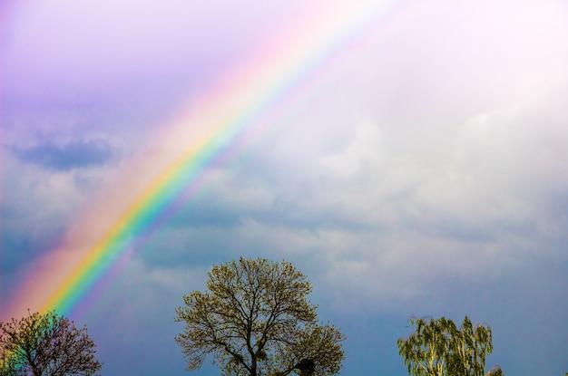 雨上がりの曇り空に輝く虹