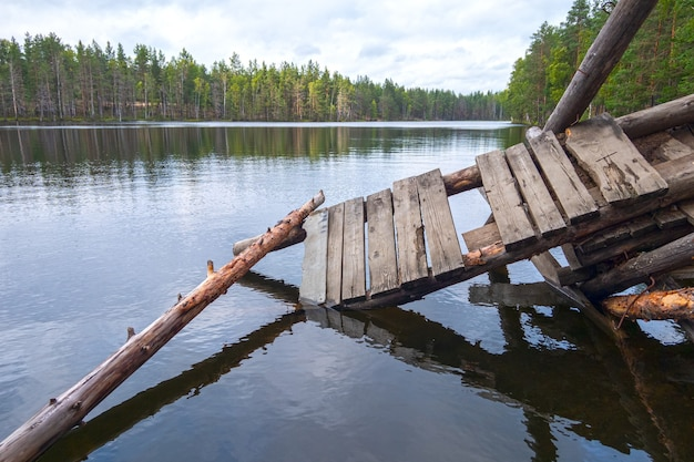 松の木に囲まれた森の湖の壊れた木製のダイビング橋