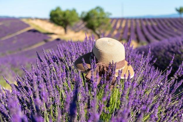 フランスのプロヴァンスのラベンダー畑にある茶色の女性の帽子。