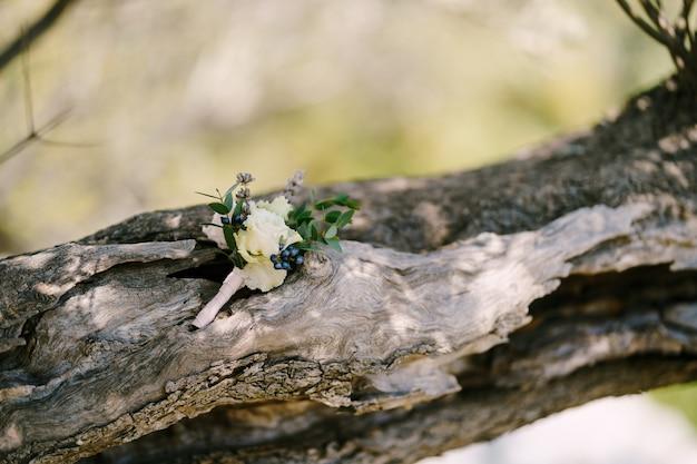 나무 껍질에 흰 장미의 신랑을 위한 친구