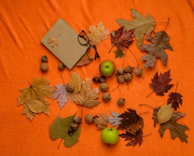 노란색-황금 잎, 녹색 사과 및 주황색 바닥에 책의 무리. 남성, 여성 및 아동을 위한 모든 가을 의류에 대한 큰 할인. 전체 가을 컬렉션 판매, 놀라운 할인.