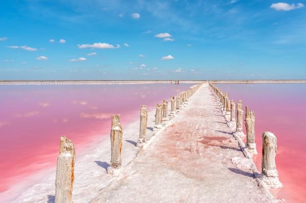 Спокойный умиротворенный пейзаж розового соленого озера с деревянными палками, покрытыми солью в крыму.