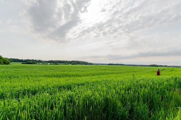 Кавказский мальчик в красной футболке работает в поле пшеницы зеленый в пасмурный летний день.