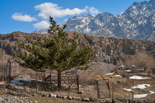 산골짜기 언덕에 있는 묘지. 백그라운드에서 높은 눈 덮인 산.