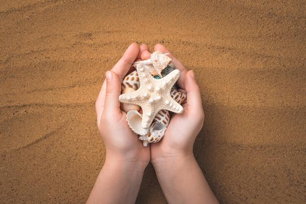 Ребенок держит морскую звезду и ракушки на фоне песка.