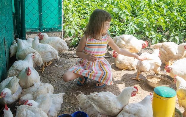 鶏と農場の子供。