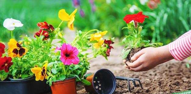Ребенок сажает цветник