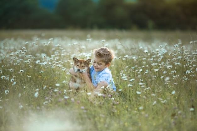 Ребенок играет с собакой в поле с ромашками
